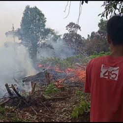 Kebakaran Lahan di Rimbo Panjang Dekat dengan Pemukiman Warga