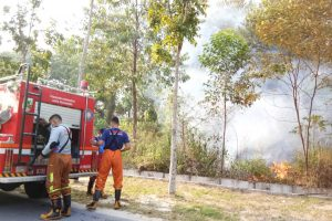 Karhutla di UIN Suska Riau Dekat dengan Asrama Putri